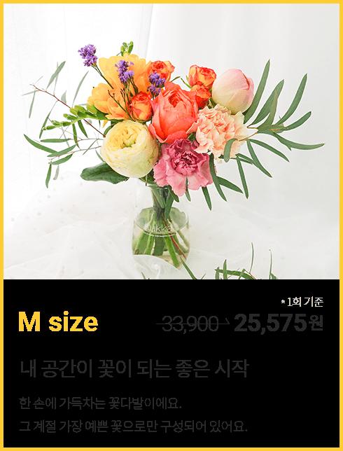 꽃 정기구독 M 사이즈