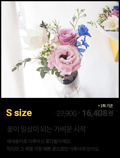 꽃 정기구독 S 사이즈